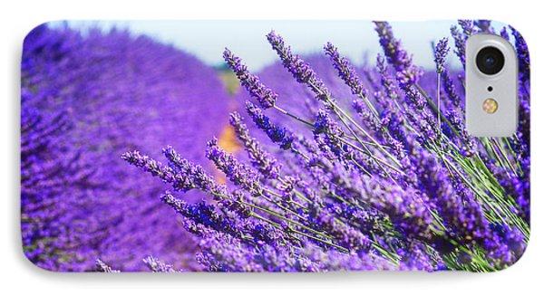 Lavender Field IPhone Case by Anastasy Yarmolovich