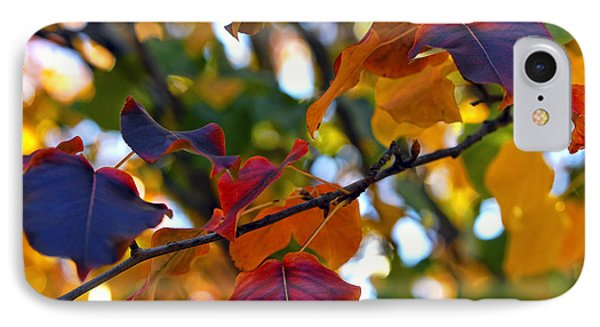 Leaves Of Autumn IPhone Case by Stephen Anderson