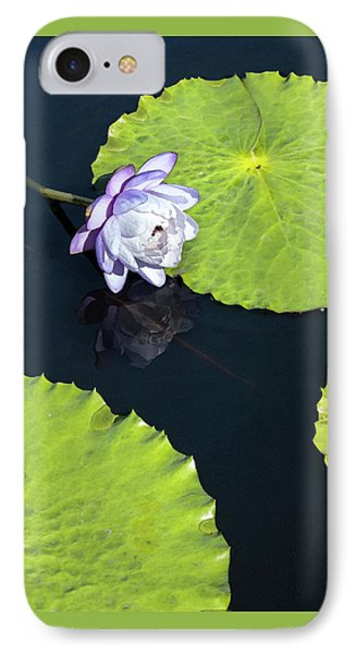 IPhone Case featuring the photograph Lily Love by Suzanne Gaff