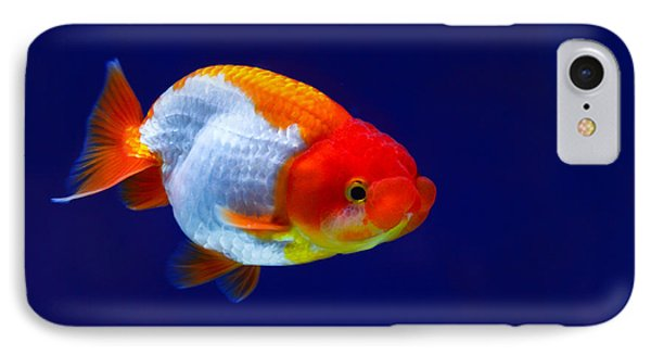Lion Head Goldfish 4 IPhone Case
