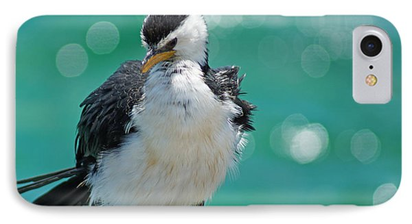 Little Pied Cormorant I IPhone Case by Cassandra Buckley