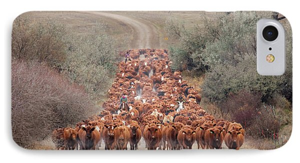 Long Line Of Reds IPhone Case by Todd Klassy