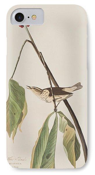 Louisiana Water Thrush IPhone Case by John James Audubon