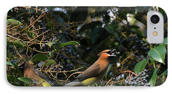 Cedar Waxing iPhone 7 Case - Love Those Berries by Skip Willits