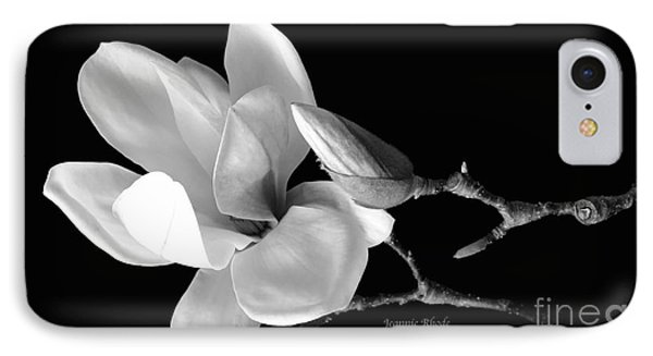 Magnolia In Monochrome IPhone Case by Jeannie Rhode