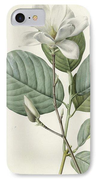Magnolia IPhone Case by Pierre Joseph Redoute