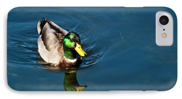 IPhone Case featuring the photograph Mallard by Bill Barber