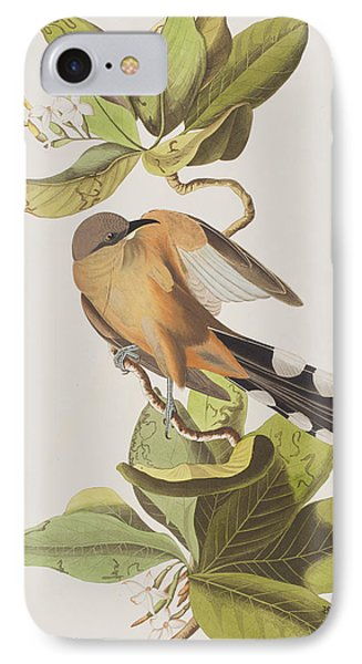 Cuckoo iPhone 7 Case - Mangrove Cuckoo by John James Audubon