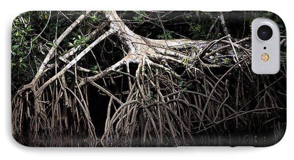 Mangrove Tree In Orinoco Delta IPhone Case
