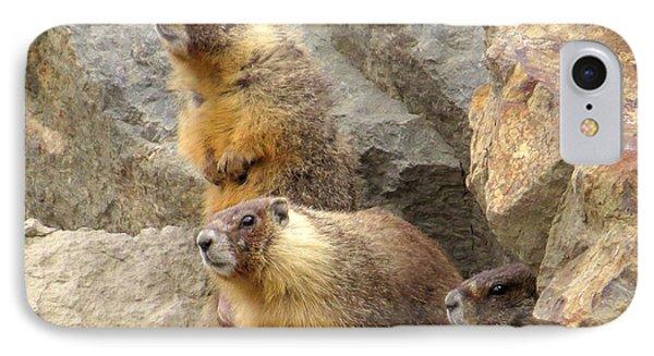 Marmot Trio IPhone Case