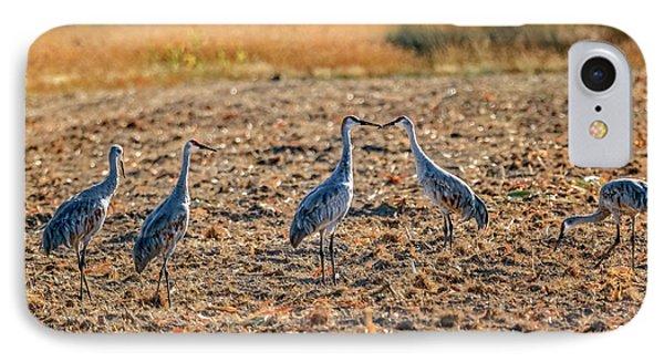 Migrating Sandhill Cranes IPhone Case by Robert Bales