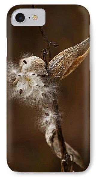 Milkweed Pod IPhone Case by Elsa Marie Santoro