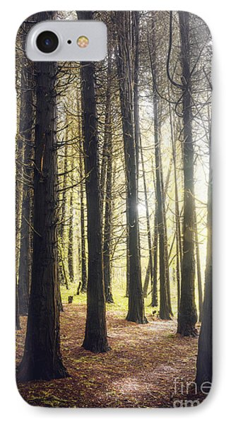 Misty Forest IPhone Case by Carlos Caetano