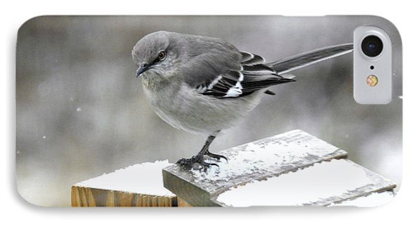IPhone Case featuring the photograph Mockingbird  by Brenda Bostic