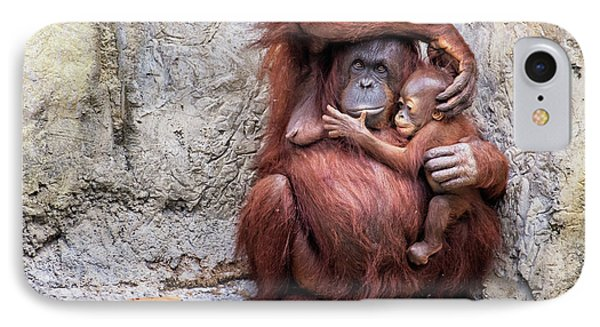 Mom And Baby Orangutan IPhone Case by Stephanie Hayes