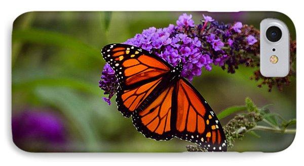 Monarch IPhone Case by Brenda Bostic