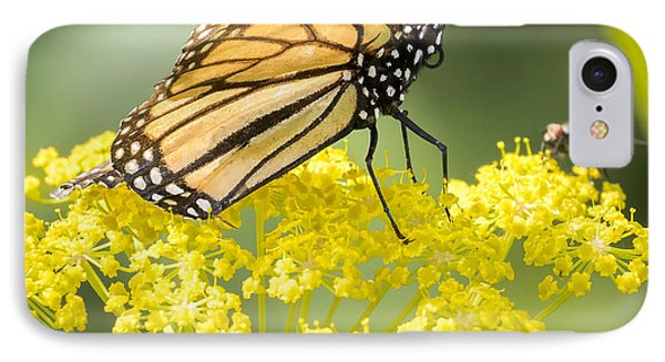 Monarch Butterfly IPhone 7 Case