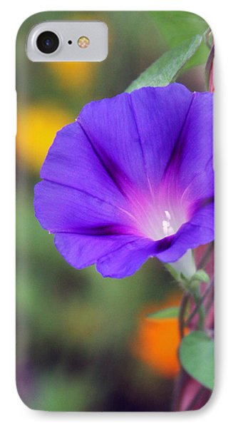 IPhone Case featuring the photograph Morning Glory by Vadim Levin