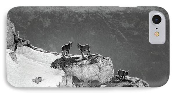 Mountain Goats IPhone Case by Medina Rosa