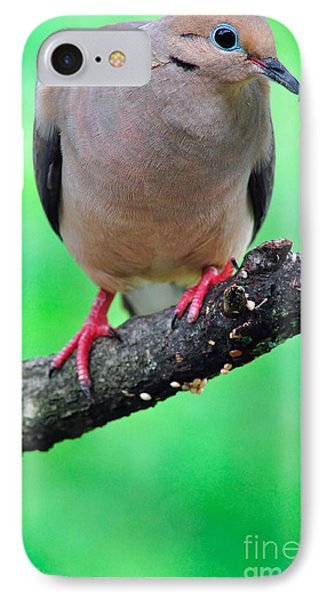 Mourning Dove Phone Case by Thomas R Fletcher
