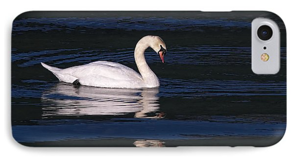 IPhone Case featuring the photograph Mute Swan  by Sharon Talson