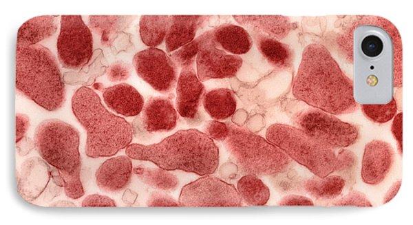 Mycoplasma Genitalium Bacteria Phone Case by