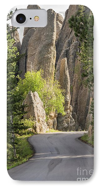 Needles Highway IPhone Case by Juli Scalzi