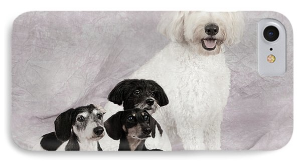 Fur Friends IPhone Case by Erika Weber
