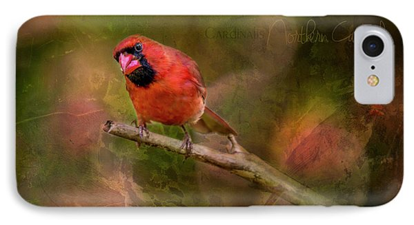 Northern Cardinal IPhone Case by Irwin Seidman