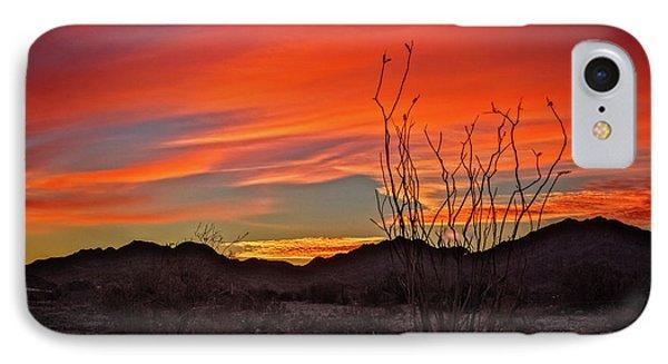 Ocotillo Sunrise IPhone Case by Robert Bales