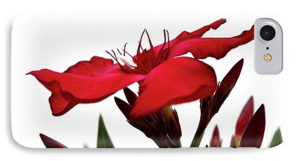 Oleander Blood-red Velvet 3 IPhone Case