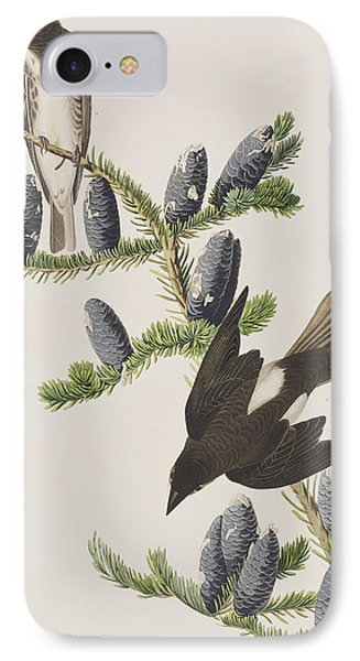 Olive Sided Flycatcher IPhone Case by John James Audubon