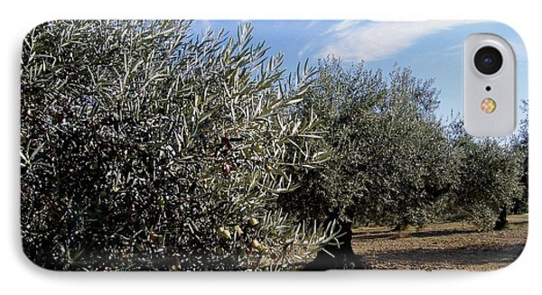 IPhone Case featuring the photograph Olive Trees by Judy Kirouac