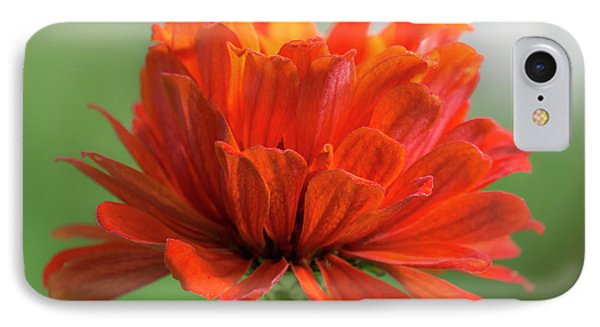 Red Zinnia  IPhone Case by Jim Hughes