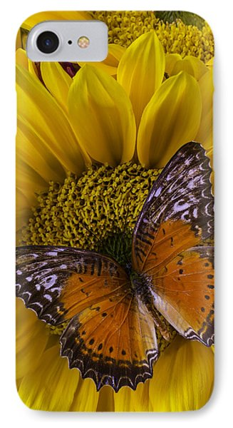 Orange Butterfly On Sunflower IPhone Case by Garry Gay