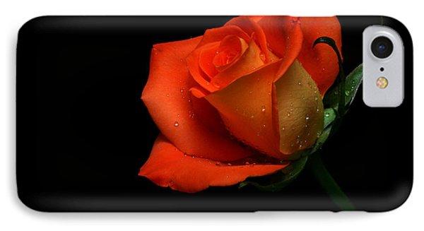 Orangette IPhone Case