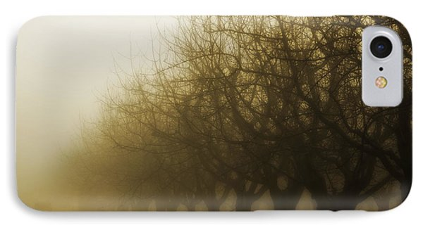 Orchard In Fog IPhone Case