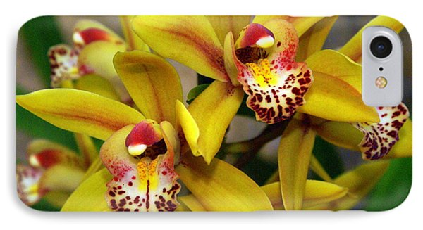 Orchid 9 IPhone Case by Marty Koch