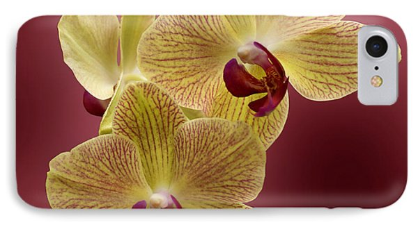 Orchid Phone Case by Sandy Keeton