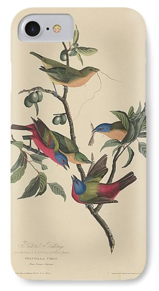 Painted Bunting IPhone 7 Case