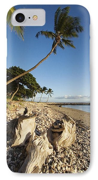 Palm And Driftwood Phone Case by Ron Dahlquist - Printscapes