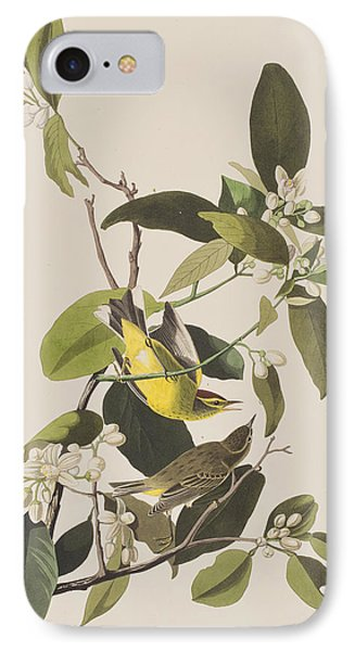 Palm Warbler IPhone Case by John James Audubon
