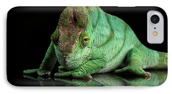 Parson Chameleon, Calumma Parsoni Orange Eye On Black IPhone Case by Sergey Taran