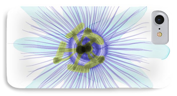 Passion Flower, X-ray IPhone Case by Ted Kinsman