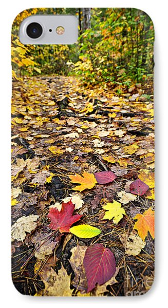 Path In Fall Forest Phone Case by Elena Elisseeva