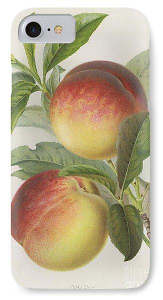 Peaches IPhone 7 Case