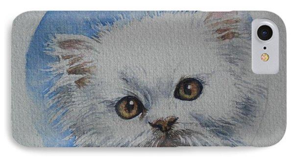 Persian Kitten IPhone Case