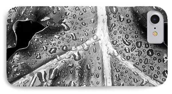 Philodendron Rain IPhone Case by Scott Pellegrin