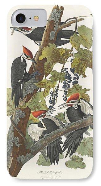 Pileated Woodpecker IPhone 7 Case by Anton Oreshkin
