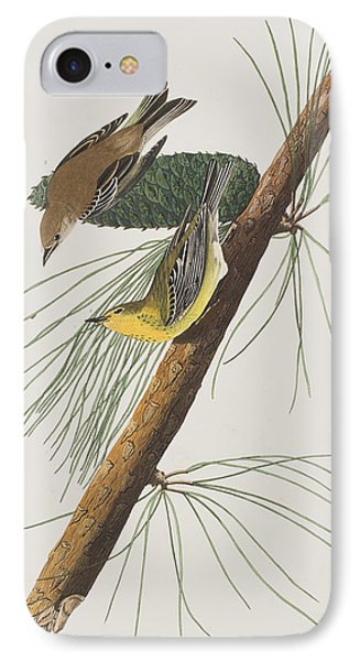 Pine Creeping Warbler IPhone Case by John James Audubon